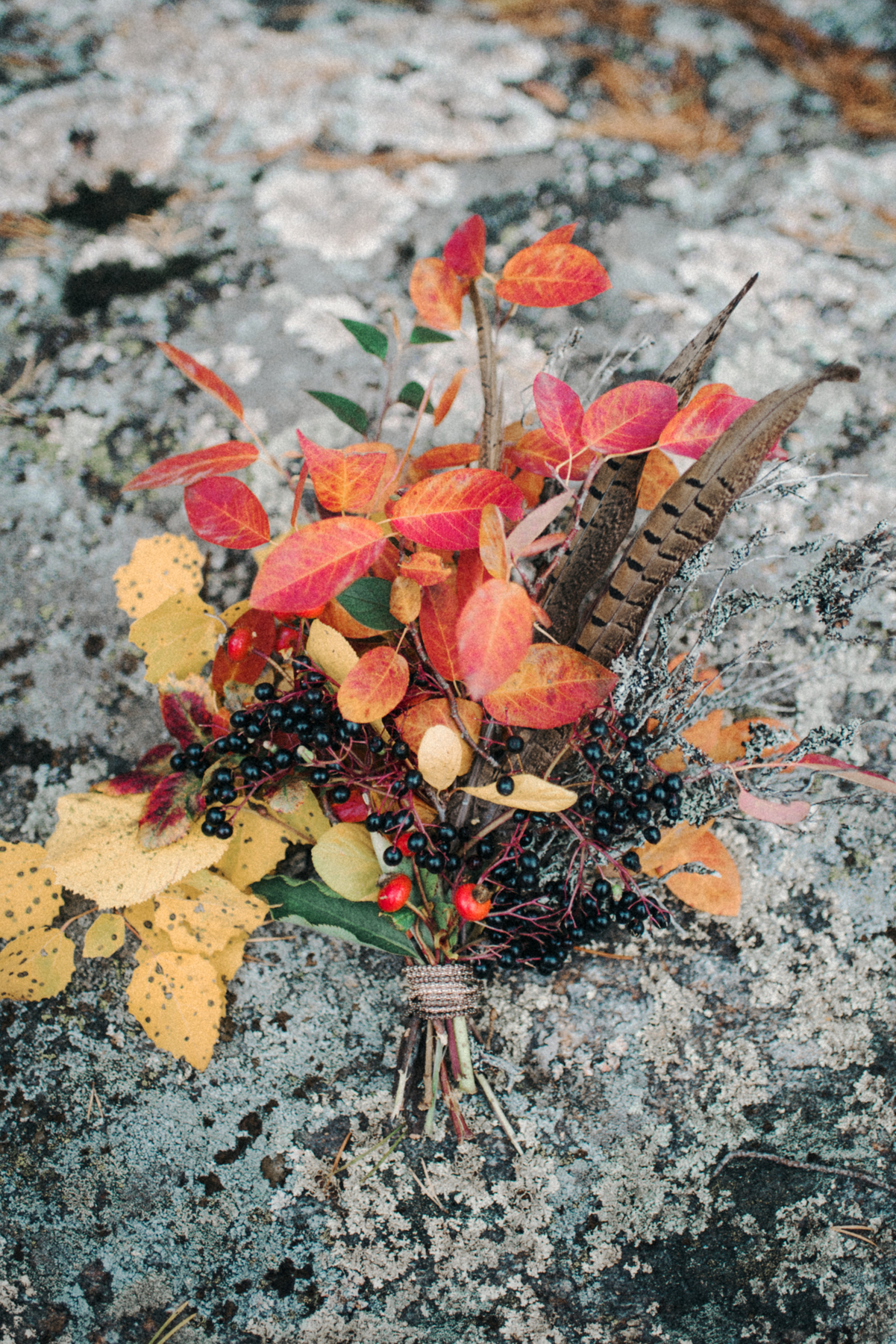 The Nordic Tales of Fall